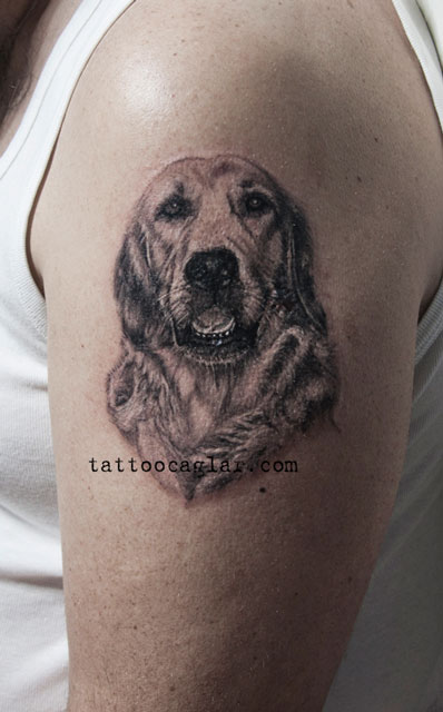 golden retriever portre dovme tattoo zone